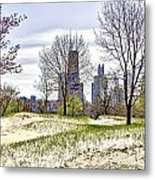 The Chicago Skyline Day-002 Metal Print