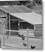 The Chicken House Metal Print
