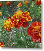 The Color Of Fire Metal Print