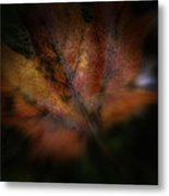 The Color Of Red Metal Print