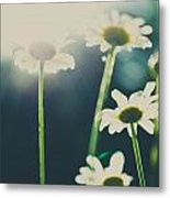 The Color Of Spring Metal Print