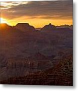 The Colors Of Nature Metal Print