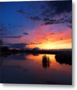 The Cool Of The Evening Metal Print
