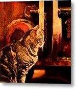 The Crane Yard Cat Metal Print
