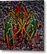 The Crawdad Digital Art Metal Print