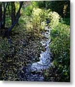 The Creek At Finch Arboretum Metal Print