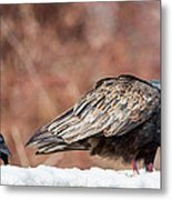 The Crow And Vulture Metal Print