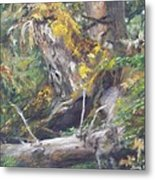 The Crying Log Metal Print