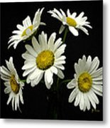 The Daisy Five  Metal Print