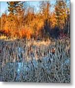 The Dance Of The Cattails Metal Print