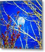 The Day The Moon Stayed Out All Day Metal Print