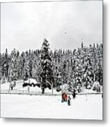 The Dazzle Of Winter Trees At Gulmarg - Kashmir- India- Viator's Agonism Metal Print