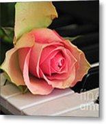 The Delicate Rose Metal Print