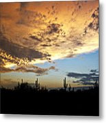 The Desert Sky  Metal Print