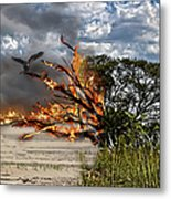 The Destruction Of Our Land Metal Print by Ronel Broderick