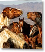 The Discussion Metal Print