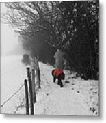 The Dog In The Red Coat Metal Print