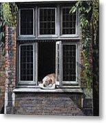 The Dog of Bruges Metal Print