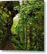 The Eagle Creek Trail Metal Print