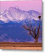 The Eagles And The Peaks Metal Print