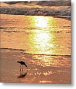 The Early Bird Metal Print