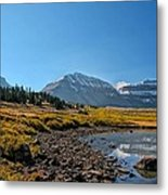 The Edge Of The Pond Metal Print