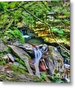 The Emerald Forest 14 Metal Print
