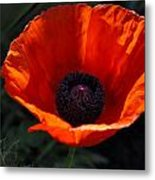 The Empess In Red Metal Print