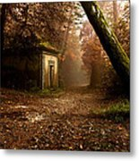 The Enchanted Trail Metal Print