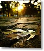 The End Of Fall Metal Print
