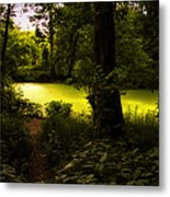 The End Of The Path Metal Print