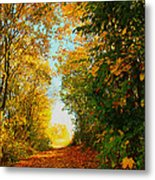 The End Of The Road. Metal Print