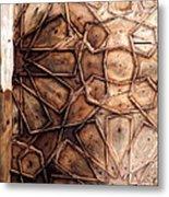 The Enduring Majesty Metal Print by Murtaza Humayun Saeed