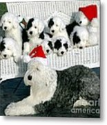 The Entire Family Metal Print by Kathleen Struckle