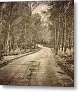 The Entrance Of The Great Forest Metal Print