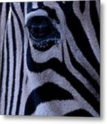 The Eye Of The Zebra Metal Print