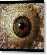 The Eyes 12 Metal Print