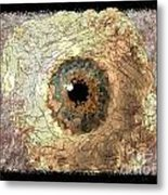 The Eyes 17 Metal Print