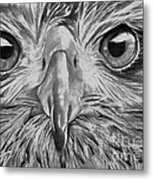 The Eyes Are On You Metal Print
