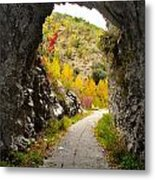 The Fall Cave Metal Print