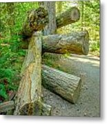 The Fallen Collection 5 Metal Print