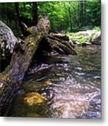 The Fallen Metal Print by Dwayne Gresham