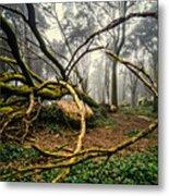 The Fallen Tree II Metal Print