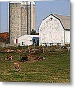 The Farm In Autumn Metal Print