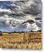 The Farm In The Summer Metal Print