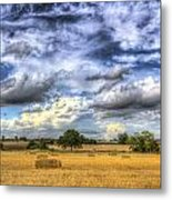 The Farm In The Summertime  Metal Print