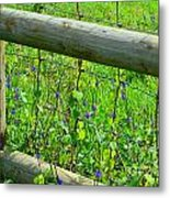 The Fence At The Meadow Metal Print