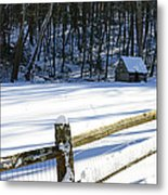 The Fence Line Metal Print