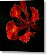 The Fire Flower Metal Print