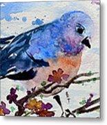 The First Bluebird Metal Print